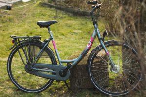 regulamin wypozyczalni rowery kudowa