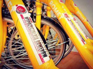 nowe rowery w wypożyczalni