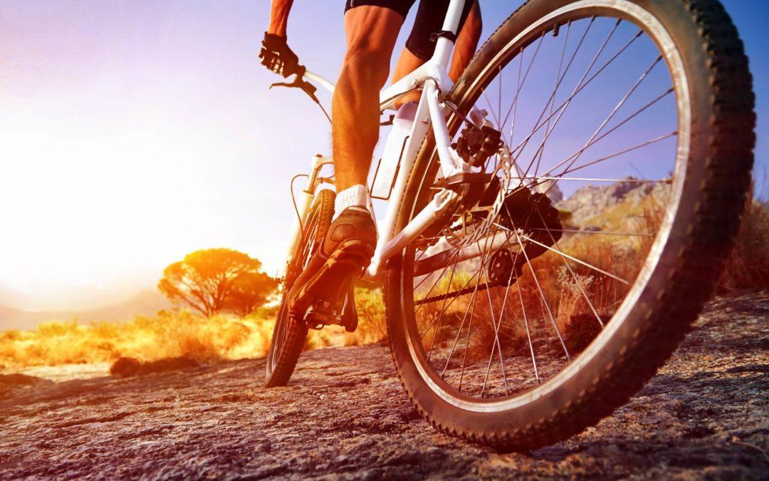 Wypożyczalnia rowerów w Dusznikach-Zdroju